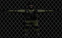 Disguised Terror