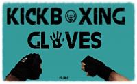 Kickboxing Gloves