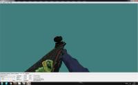 CS:GO AUG   Chameleon