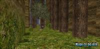 bkz_forestrace screenshot 3