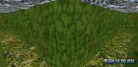 maze_fun_bushes screenshot 2