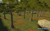 dm_forest_v1